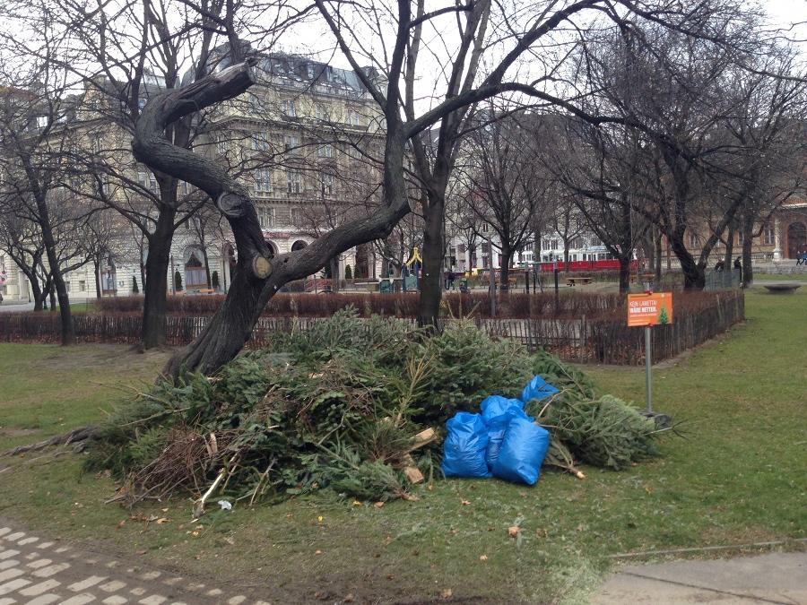 Место сбора елок после Рождества. Они будут переработаны или использованы как-нибудь с пользой.