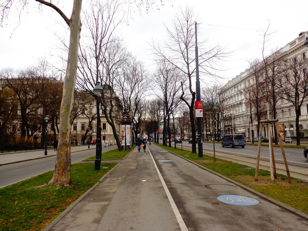 Велосипедная дорожка в Вене. Предполагаю, что велосипедистов тогда было не много из-за холода. Так вроде перемещаться по центру города на велосипеде должно быть удобно.